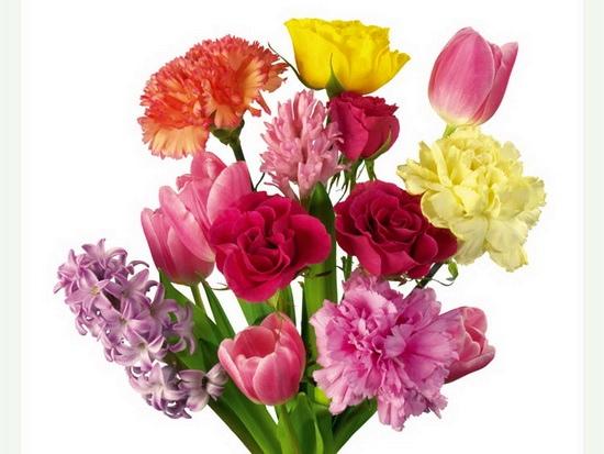 Купить лилии в магнитогорске
