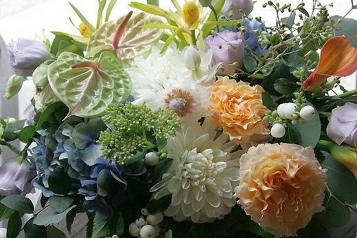 Розы бывают белыми и розовыми желтыми